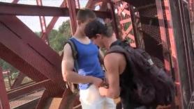 Videos gays hd