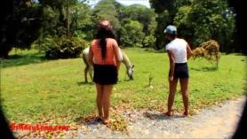 Porno de caballos y mujeres