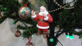 Serviporno regalo de navidad