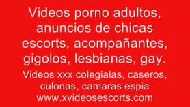 Promoción de TV Bindonoid xxx styl