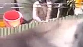 Hot Bathing Teenie es tomada por un hombre mayor cachondo