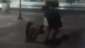 Guardia de seguridad tomando cepillo de dientes fuera de la bolsa de seguridad