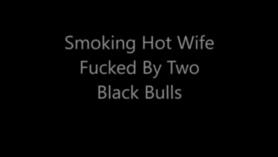 Old Bulls follando mutuamente la parte 01