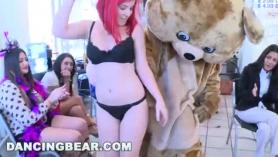 Bear with me zorra