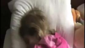 Homie Britney Honey recibe un tratamiento de coño duro Kelly Quinn LP Fontana
