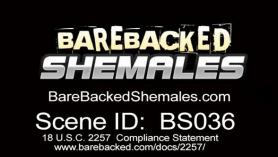 Shemale teen babe masturbators before wild hardcore sex